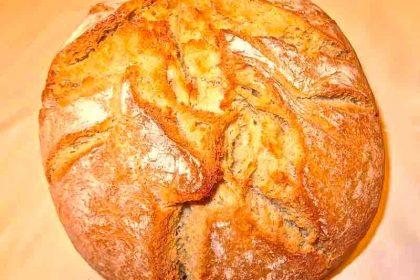 Pastelerías Panaderías Foto Hosfrinor Hostelería Gipuzkoa Hosfrinor.com Donostia San Sebastián